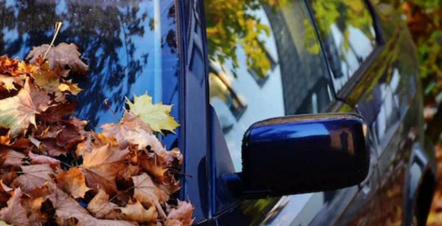Prepare Your Car for this Fall_ Some Good Tips - villegas auto repair